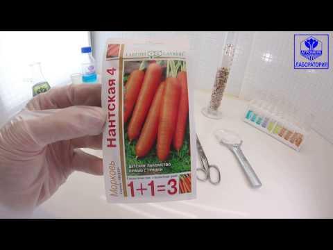 Морковь Нантская 4. Гавриш