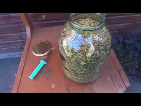 Ферментация табака своего урожая в домашних условиях.