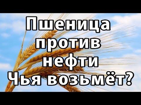 Россия - хлебная супердержава. Пшеница на экспорт.