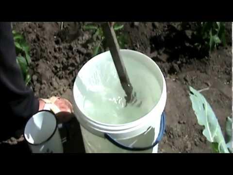 Мочевина, удобрение. Применение мочевины карбамид на огороде.