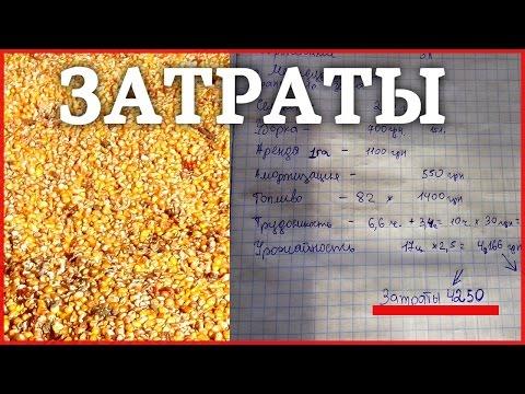 Затраты и доход на выращивании Кукурузы! Бизнес в селе на кукурузе!