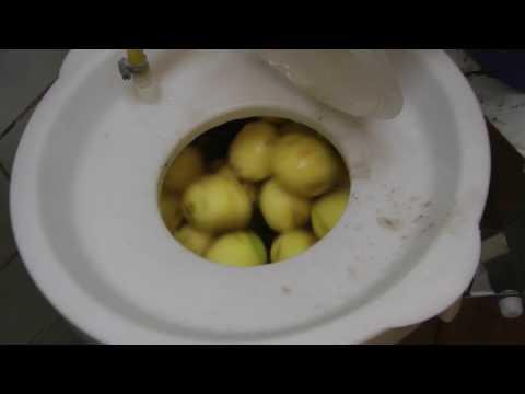 Картофелечистка. Машина очистки овощей МОК -300У обзор, работа, отзывы