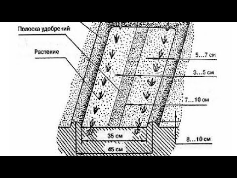 Отзывы огородников о методе Миттлайдера