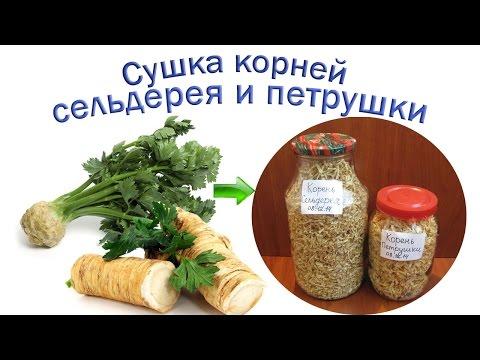 Сушка корней сельдерея и петрушки | Приправы