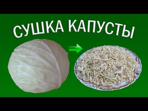 Сушка белокочанной капусты | Сушеные овощи | Еда в поход