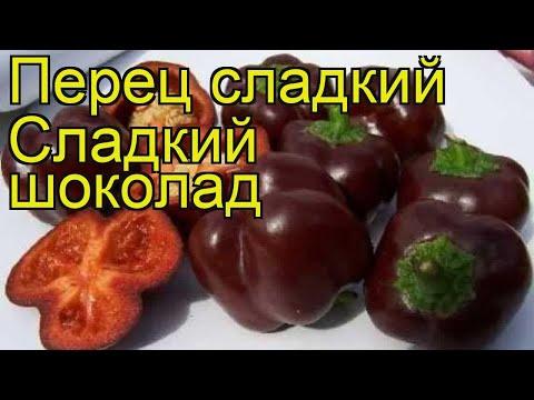 Перец сладкий Сладкий шоколад. Краткий обзор, описание характеристик Sladkii shokolad