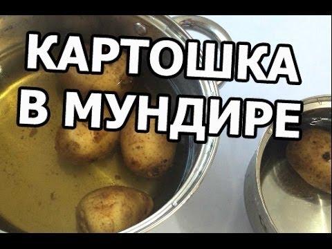 Как и сколько варить картошку в мундире. Картошка на все времена!
