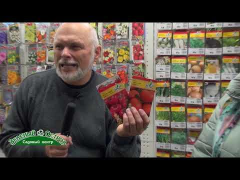 БИФ томаты, особенности