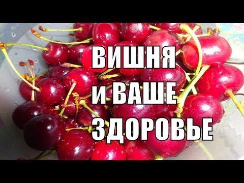 Что будет если часто есть вишню польза и вред вишни