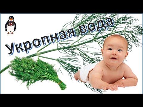 Укропная вода для новорожденных и для взрослых