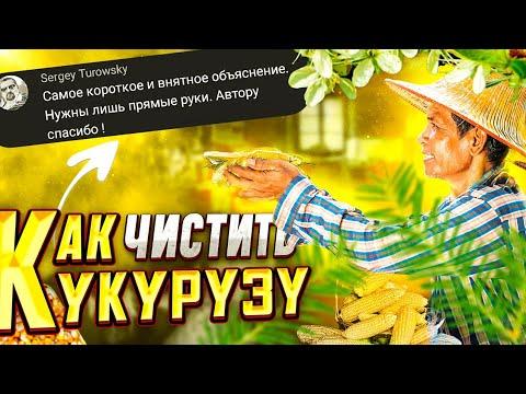 как очистить кукурузу от зёрен в домашних условиях