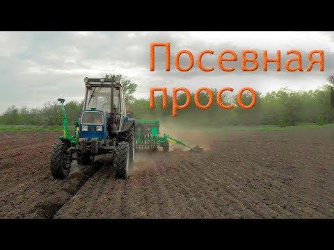 Сеем просо! ЮМЗ-8280 NIKA 4