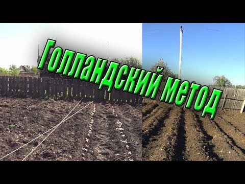 Посадка картофеля в гребни / Голландский метод / Жизнь в деревне