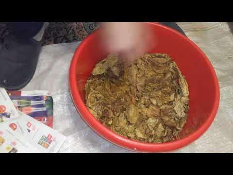 Плюсы и минусы ферментации табака дома в батарее.