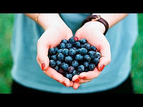 Что будет, если съесть волчью ягоду
