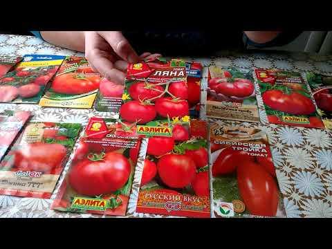 Лучшие сорта томатов супер урожай