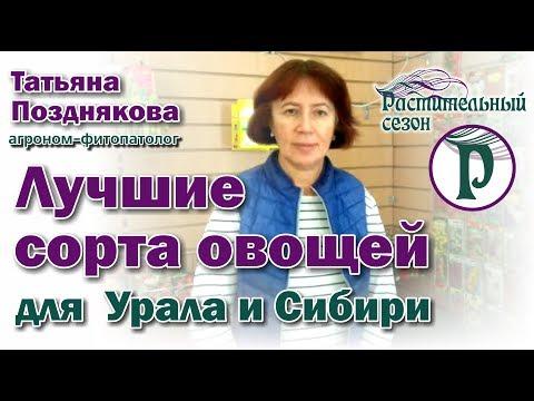 Лучшие сорта овощей для Урала и Сибири. Советы агронома Татьяны Поздняковой