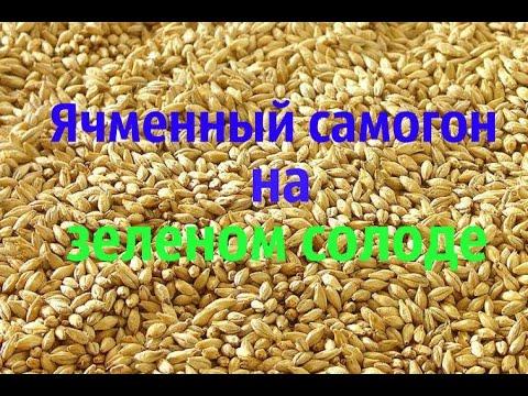 """Домашний самогон из ячменя на """"зеленом"""" солоде. Часть 1 (приготовление браги)."""