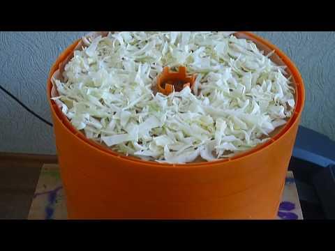 Сушим капусту в сушилке для овощей и фруктов