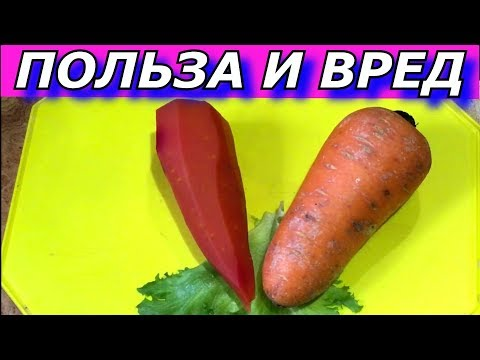 Польза вареной моркови. Вред.