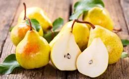 Химический состав груши, калорийность и её польза и вред для здоровья