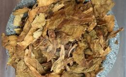 Выращиваем из семян табак «Турецкий»: инструкция для начинающих, особенности сорта