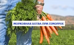 Как можно применять ботву моркови от геморроя и насколько это эффективно
