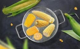 Употребление кукурузы при подагре: можно или нет, как съесть, чтобы не навредить здоровью