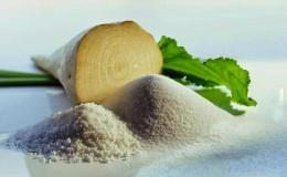 Что такое сахарная свекла: полный путь от посева овоща до полученного сахара на нашем столе
