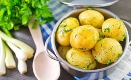Польза и вред вареного картофеля для организма человека