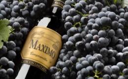 Известный низкокалорийный сорт винограда «Темпранильо»