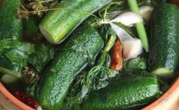 Классические рецепты малосольных огурцов в кастрюле