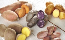 Классификация картофеля по видам