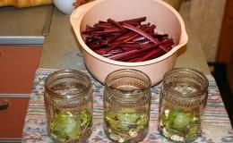 Лучшие способы заготовки листьев свеклы на зиму и рецепты из них