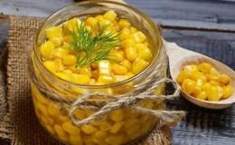 Где и как хранить вареную кукурузу правильно: различные способы и сроки сохранности свежести