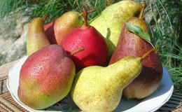 Самые сладкие и сочные сорта груш