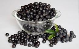 Стоит ли есть черноплодную рябину при беременности