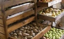 Как хранить картошку в одном погребе с яблоками и можно ли так делать