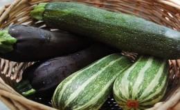 Что такое кабачки цуккини: знакомимся с видом, выращиваем на своем участке и используем для вкусных блюд