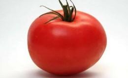 Стойкий гибрид от японских селекционеров — томат «Мишель f1»: выращиваем самостоятельно без хлопот