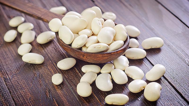 Особенности выращивания белой фасоли