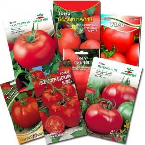 Чем опрыскать помидоры для завязи