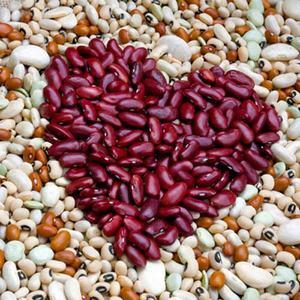 Как действует на организм фасоль: польза и вред, секреты сохранения витаминов и правила употребления