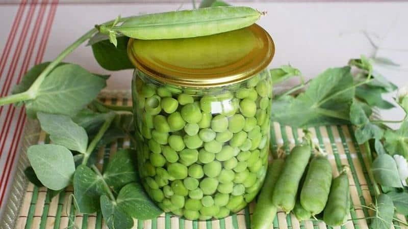 Сохраняем вкус и полезные свойства круглый год: стручки гороха - рецепты на зиму от опытных домохозяек