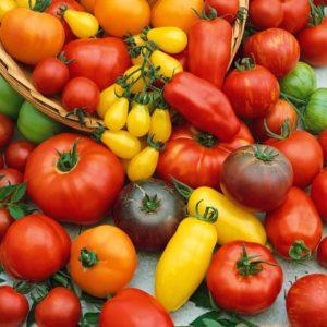 Топ-15 самых сладких сортов томатов для теплиц: обзор лучших и помощь в выборе подходящего вида
