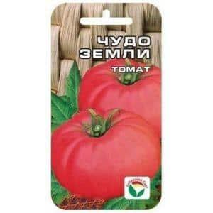"""Вкуснейший помидор с огромными плодами - томат """"Чудо земли"""""""