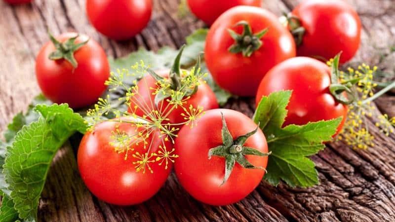 Зачем обрабатывать помидоры зеленкой и йодом?