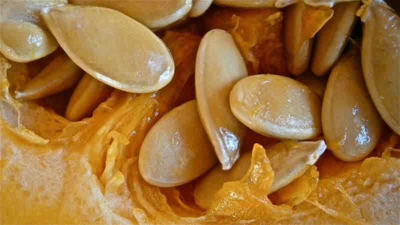 Чудодейственная вкусная смесь - чем полезны тыквенные семечки с медом и как правильно их употреблять