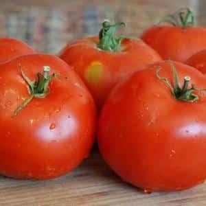 Идеальный для теплиц, раннеспелый и высокоурожайный томат {amp}quot;Благовест{amp}quot;: как выращивать его правильно