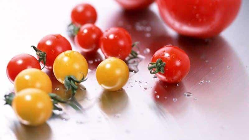 Как приготовить вкусные маринованные помидоры черри: лучшие рецепты и рекомендации от опытных домохозяек